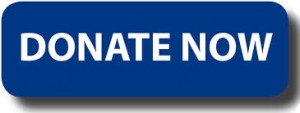 NIF Donate Button
